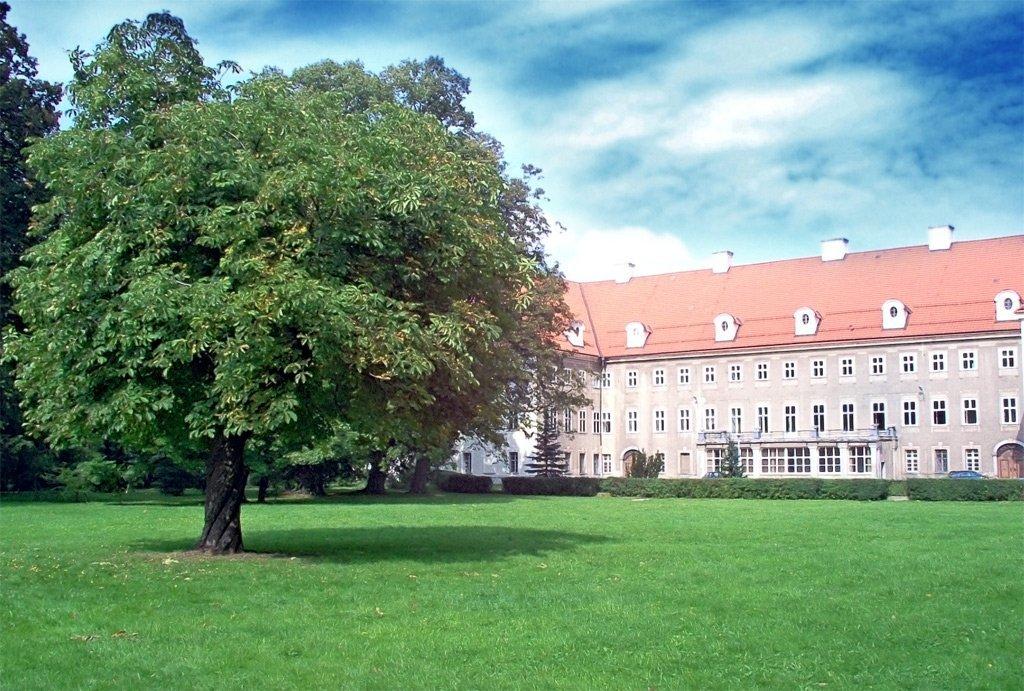 Världens 3 Mest Prestigefulla Universitet